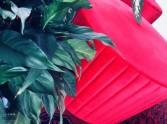 wypożyczalnia czerwonych puf